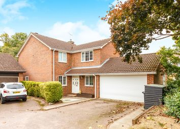 Thumbnail 4 bedroom detached house for sale in Ladywood Road, Hertford