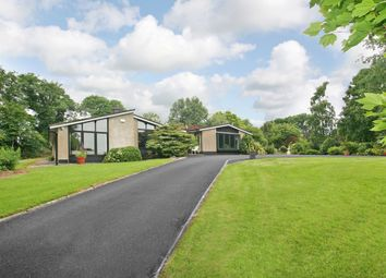 Thumbnail 4 bed bungalow for sale in Boherard House, Pallaskenry, Limerick