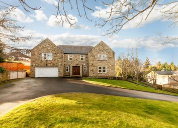 Thumbnail 4 bed detached house for sale in Willowbrook House, Causey Hill, Hexham, Northumberland