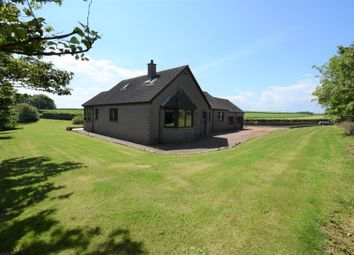 Thumbnail 3 bedroom detached house to rent in Drums Farm, Newburgh, Aberdeenshire