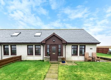 Thumbnail 3 bed semi-detached house for sale in Greystone, Carmyllie, Arbroath