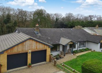 Thumbnail 4 bed detached bungalow for sale in Jennetts Close, Tutts Clump, Reading