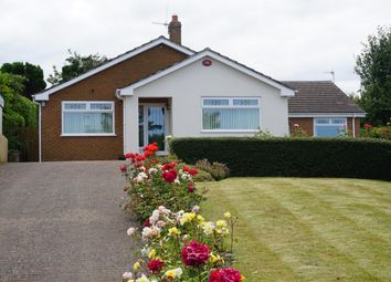 Thumbnail 4 bed detached bungalow for sale in Woods Grove, Burniston