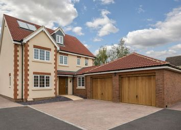 Thumbnail 5 bed detached house for sale in Dane Lane, Wilstead