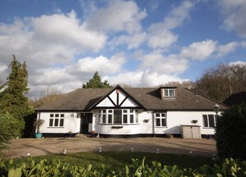 Thumbnail 4 bed detached bungalow to rent in Jig's Lane North, Warfield, Berkshire