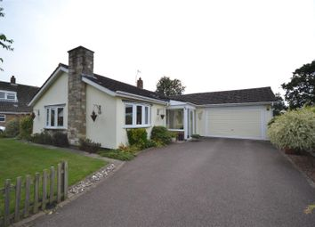Thumbnail 3 bed detached bungalow for sale in Brooke, Norwich