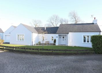 Thumbnail 3 bed detached bungalow for sale in Nant Y Ffynnon, Letterston, Haverfordwest