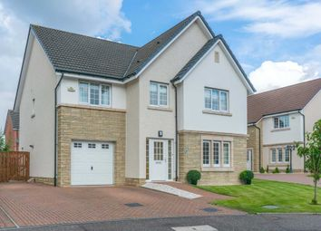 Thumbnail 5 bed detached house for sale in Gadwall Grove, Motherwell