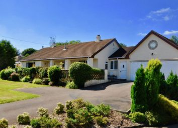 Thumbnail 4 bedroom detached bungalow for sale in Whiddon Down, Okehampton