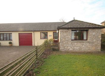 Thumbnail 2 bed semi-detached bungalow to rent in The Lynchetts, Shap, Penrith, Cumbria