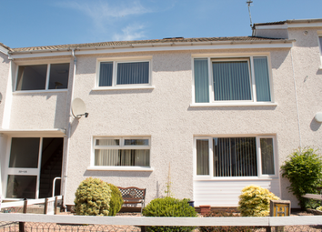 Thumbnail 1 bedroom flat to rent in 24 Pitreuchie Place, Forfar