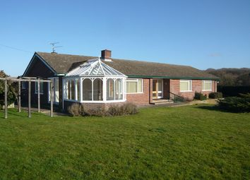 Thumbnail 4 bed bungalow to rent in Oare, Hermitage, Newbury, Berkshire