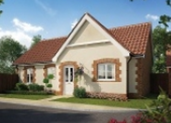 Thumbnail 2 bed detached house for sale in Nightingale Meadows, Leiston