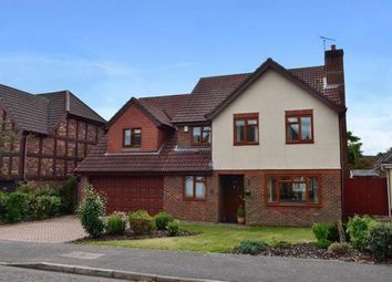 Thumbnail 5 bedroom property to rent in Rainsborough Rise, Thorpe St. Andrew, Norwich