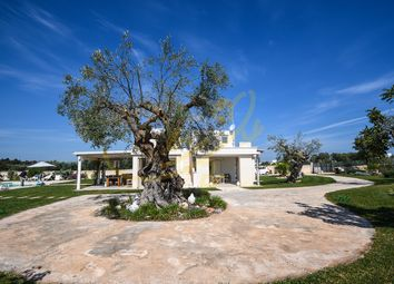 Thumbnail 1 bed villa for sale in Cozzana, Italy