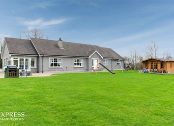 Thumbnail 4 bedroom detached bungalow for sale in Terryhoogan Road, Scarva, Craigavon, County Armagh