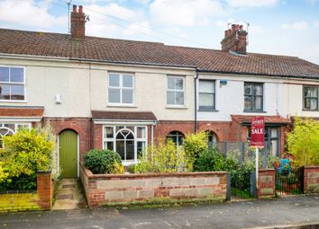 3 bed terraced house for sale in Britannia Road, Norwich NR1
