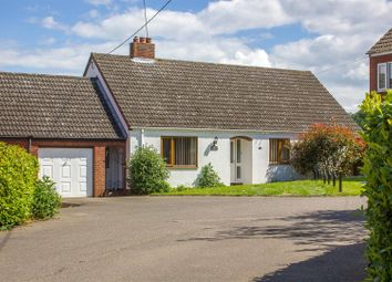 Thumbnail 4 bed bungalow for sale in Twites Corner, Great Saxham, Bury St. Edmunds