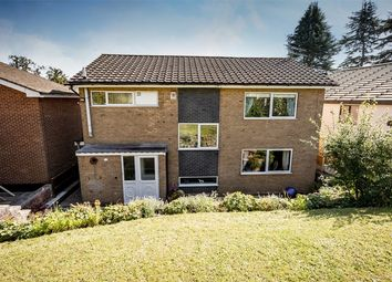 Thumbnail 4 bed detached house for sale in Lodge Drive, Belper, Derbyshire