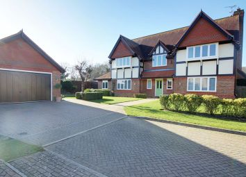 Thumbnail 5 bed detached house for sale in Bluebell Drive, Cheshunt, Waltham Cross