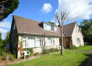 Thumbnail 4 bed property for sale in Church Lane, Pilley, Lymington