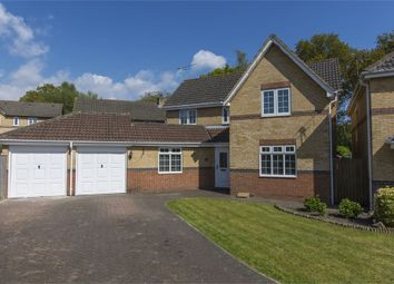 Thumbnail 4 bed detached house for sale in Ascot Road, Horton Heath, Eastleigh, Hampshire