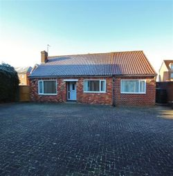 Thumbnail 4 bedroom bungalow to rent in Orchard View, Cherry Tree Drive, Wistow