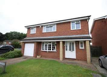 Thumbnail 4 bed detached house to rent in Peebles Close, Darlington, County Durham