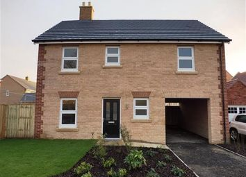 Thumbnail 4 bedroom detached house to rent in Buttercup Drive, Downham Market