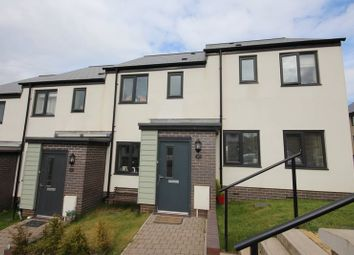 Thumbnail 2 bed terraced house to rent in Hollyhock Way, Paignton