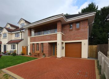 Thumbnail 4 bed detached house to rent in The Meadows, Machen, Caerphilly