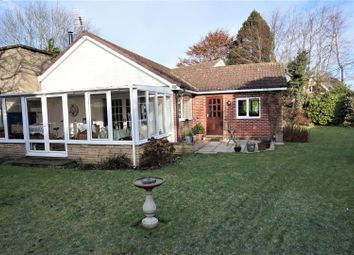 Thumbnail 4 bed detached bungalow for sale in Common Road, Thorpe Salvin