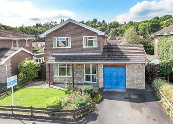 Thumbnail 3 bed detached house for sale in Glandwr Park, Builth Wells
