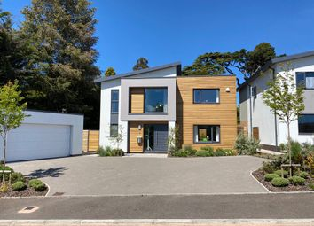 Thumbnail 4 bed detached house to rent in Regency Drive, Exeter