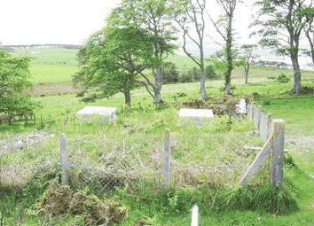 Thumbnail Land for sale in Castlecraig Sr, Nigg, Tain IV191Qs