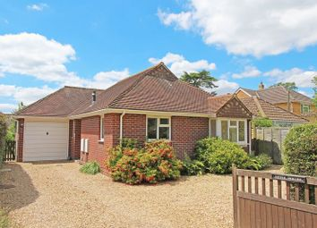 Thumbnail 2 bed detached bungalow to rent in Station Road, Sway, Lymington