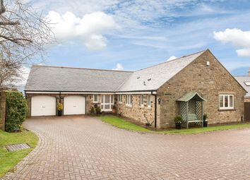 Thumbnail 4 bedroom detached bungalow for sale in Hill Top High, Hedley On The Hill, Stocksfield, Northumberland
