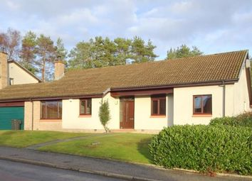 Thumbnail 4 bed detached house to rent in Forestside Road, Banchory