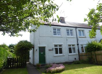 Thumbnail 3 bed cottage for sale in Great Langton, Northallerton