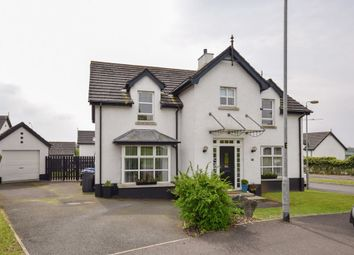 Thumbnail 4 bed detached house to rent in 85 Greenvale Road, Antrim