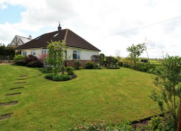 Thumbnail 4 bed property for sale in Payhembury, Honiton