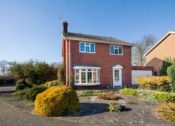 Thumbnail 4 bed detached house for sale in Falmouth Gardens, Newmarket