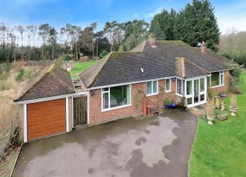 Thumbnail 4 bed detached bungalow for sale in Common Road, Kensworth, Dunstable