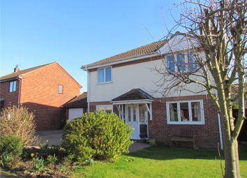 Thumbnail 4 bedroom detached house to rent in The Hornbeams, Little Oakley, Harwich, Essex