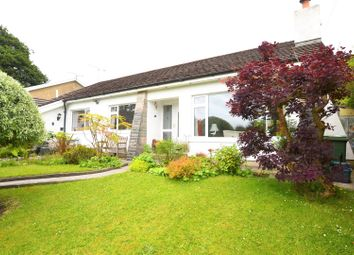 Thumbnail 3 bed detached bungalow for sale in Ragged Staff, Saundersfoot