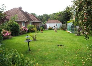 Thumbnail 3 bed bungalow for sale in The Broyle, Ringmer
