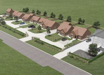 Thumbnail 3 bed detached bungalow for sale in Plot 7 Walcott Grove, Walcott Road, Billinghay, Lincolnshire