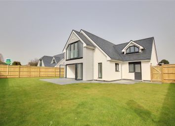 Thumbnail 4 bed detached house for sale in Sea Lane, Ferring, West Sussex