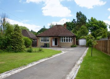 Thumbnail 2 bed detached bungalow to rent in Frog Grove Lane, Wood Street Village, Guildford