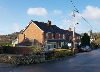Thumbnail 3 bed semi-detached house for sale in Dolphin Street, Colyton, Devon